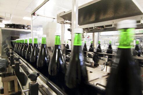 Bottling machine in industrial wine cellar - CUF41763