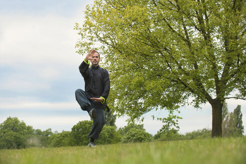 Mature man performing Tai Chi in countryside - CUF41837