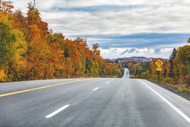 Canada, Ontario, main road through colorful trees in the Algonquin park area - WPEF00704