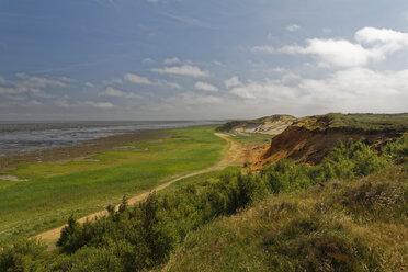 Germany, Noth Frisia, Sylt, Cliff coat near Morsum - GFF01064