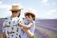France, Provence, Valensole plateau, father and daughter in lavender fields in the summer - GEMF02124