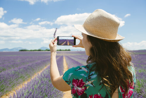 France, Provence, Valensole plateau, woman taking smartphone picture in lavender fields in the summer - GEMF02151