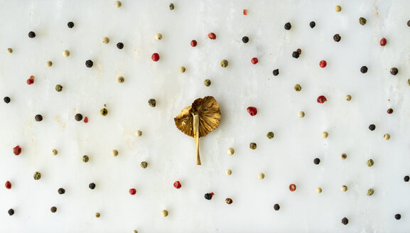 Arrangement of mushroom and peppercorns on white ground - AFVF00820