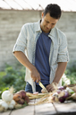 Sorting and chopping freshly picked vegetables and fruits. A man using a sharp knife. - MINF00290