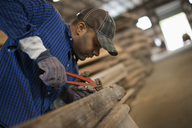 A man working in a reclaimed timber yard. Using a tool to remove metals from a reclaimed piece of timber. Workshop. - MINF00517