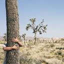 Man hugging a Joshua Tree in Joshua Tree national park. - MINF00714