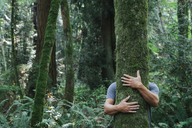 Man hugging tree in lush, green forest - MINF00729