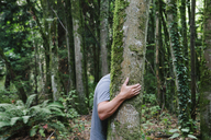Man hugging tree in lush, green forest - MINF00732