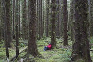 Man sitting among moss-covered Hemlock and Spruce trees in lush temperate rainforest of hte Hoh forest in Washington, USA - MINF00741