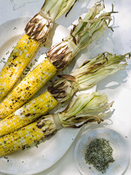 A buffet table set up in a garden for al al fresco meal. Sweetcorn, corn on the cob. - MINF00753
