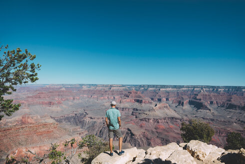 USA, Arizona, Grand Canyon National Park, back view of man looking at view - GEMF02168