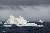 Icebergs on the waters of the Southern Ocean. - MINF01515