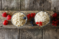 Various oat flakes and berries - EVGF03368