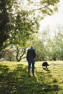 Rear view of sheep farmer, shepherd walking across a meadow with his sheepdog. - MINF01805
