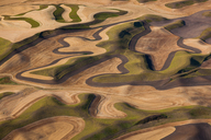 Farmland landscape, with ploughed fields and furrows in Palouse, Washington, USA. An aerial view with natural patterns. - MINF02201