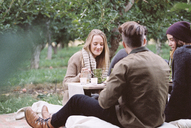 Apple orchard. Group of people sitting on the ground, food and drink on a table. - MINF02287