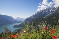 Italy, Trentino, Brenta Dolomiten, Lago di Molveno - GWF05579