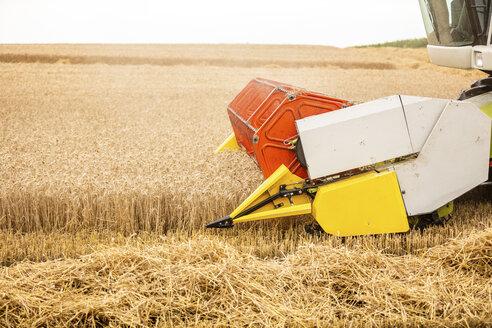 Serbia, Vojvodina, Combine harvesting wheat field - NOF00064