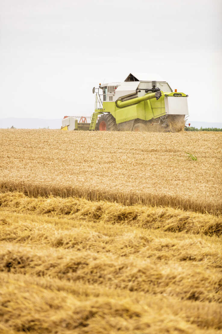 Serbia, Vojvodina, Combine harvesting wheat field - NOF00067 - oticki/Westend61