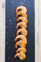 Row of shrimps on slate, salt - GIOF03995