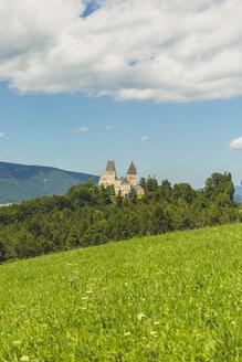 Austria, Lower Austria, Neunkirchen District, Burg Wartenstein - AIF00528