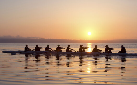 Nine people rowing at sunset - ISF18024
