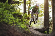 Mountain biker riding through woods - ISF18039