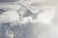 Birds flying through clouds, Schilthorn, Murren, Bernese Oberland, Switzerland - ISF18333