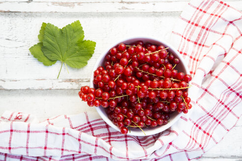 Bowl of red currants - LVF07345