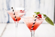 Frose, rose slushie with red currants - SBDF03715