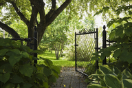 Path and open garden gate in spring - ISF19441