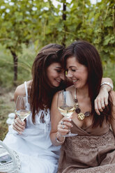 Friends at summer picnic in a vineyard, drinking wine - MAUF01637
