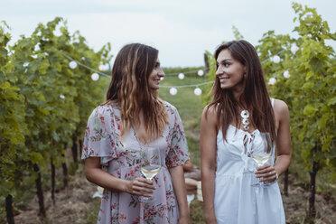 Young women walkig in vineyard, having a picnic, drinking wine - MAUF01640