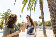 Two happy female friends holding hands on promenade with palms - WPEF00746