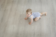 High angle view of baby boy wearing striped onesie crawling across hardwood floor. - MINF04254