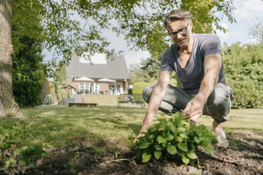 Mature man gardening in garden of his home - JOSF02496