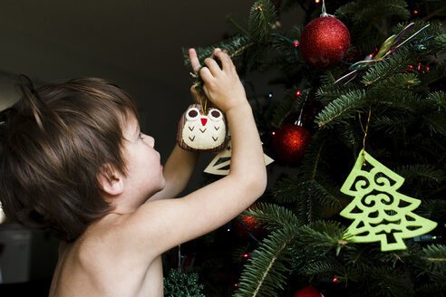 A child, boy decorating a Christmas tree with ornaments. - MINF05066