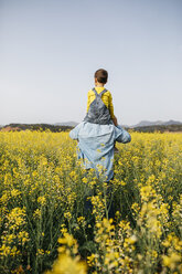 Spain, back view of man with his son on his shoulders walking through a field of yellow flowers - JRFF01774