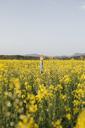 Spain, father and little son hiding in a rape field - JRFF01786
