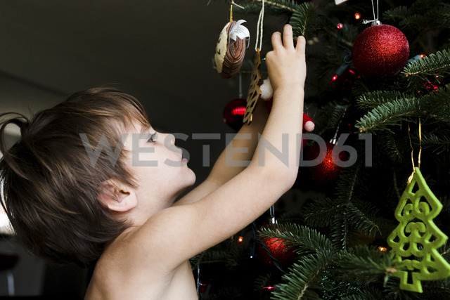 Boy, child decorating a Christmas tree with ornaments. - MINF05141