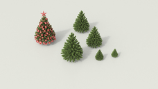 3D rendering, Group of fir trees white background on background, admiring Christmas tree - UWF01469
