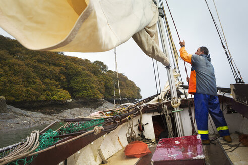 Traditional Sustainable Oyster Fishing.  A fisherman on a sailing boat. - MINF05806