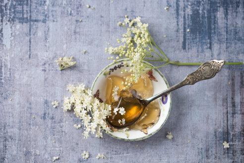 Bowl of elder jelly and elderflowers - MYF02049