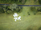 Indonesia, Bali, Aerial view of golf course with bunker and green - KNTF01169