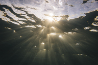 Maledives, Ocean, under water shot, sunlight - KNTF01193