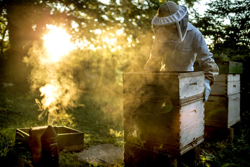 Beekeeper wearing a veil holding a beehive with a smoker for calming bees on the ground. - MINF06656
