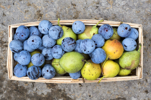 Harvest, plums and pears in basket - NDF00784