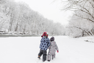 Rear view of boy and young girl standing near a tree lined river in the snow. - MINF08003
