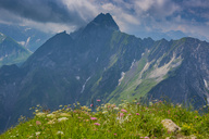 Germany, Bavaria, approaching thunderstorm at Laufbacher Eck, View to Nebelhorn and Oy Valley, Hoefats in the background - WGF01214