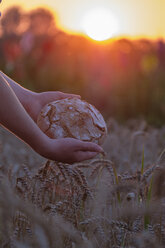 Hands of teenage boy holding fresh bread over wheat field - LBF02017
